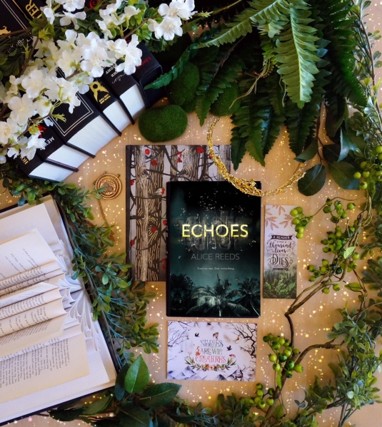 Echoes pic by bookbookowl.com