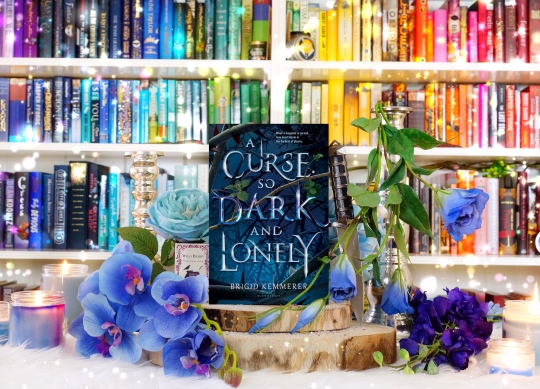A Curse so Dark and Lonely pic by bookbookowl